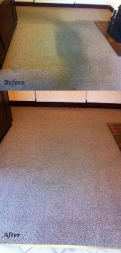 8_clean_carpet_before_after