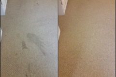 Carpet-cleaning-Redditch