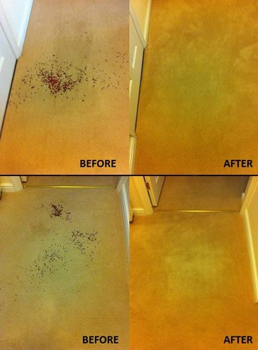 12_clean_carpet_before_after